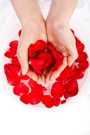 indulging: Womans hands holding rose petals, close up