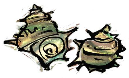 turban: Turban shell