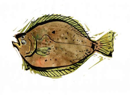 coloration: Flatfish