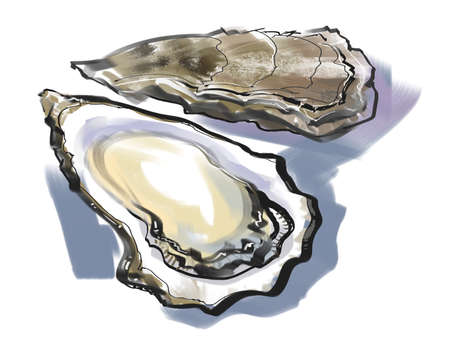 oyster: Oyster