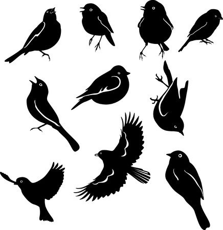 set of silhouettes of birds isolated on white background Stock Vector - 7123333