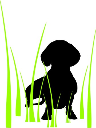 silhouette of a dog in the grass isolated on white background Stock Vector - 7105758