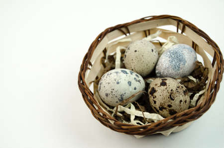 spotted: Spotted quail eggs Stock Photo