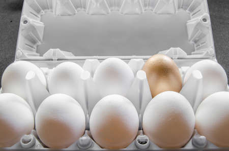 exception: One golden egg Stock Photo
