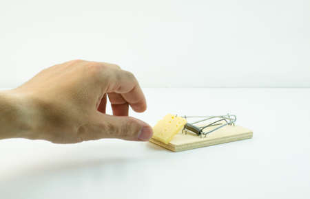 freebie: Hand reaching for a piece of cheese in a mousetrap Stock Photo