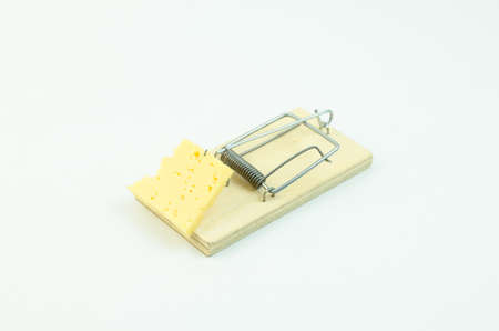 mousetrap: Cheese in mousetrap
