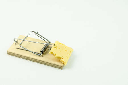 freebie: Cheese in mousetrap