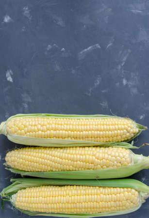 planta de maiz: Ma�z en un fondo oscuro