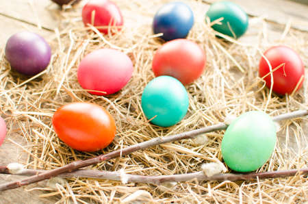 Colorful Easter eggs and branch of pussy willow on old wooden boards and hay