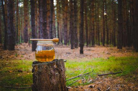 Jar of fresh honey and honey spoon on pine tree in woods.Healthy food.