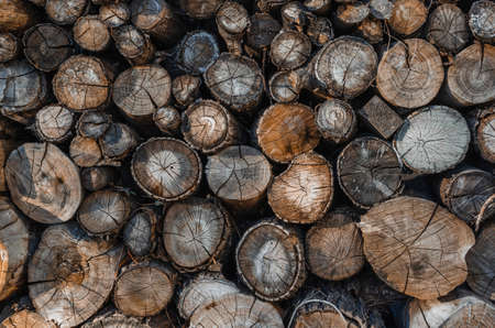 Background of stacked logs,logs.Ecological method of heating. 스톡 콘텐츠
