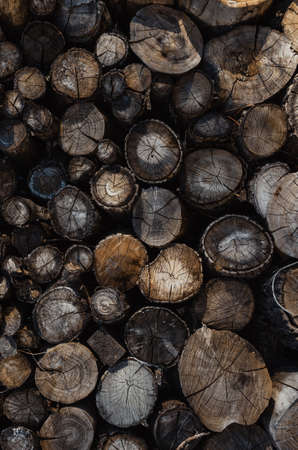 Background of stacked logs,logs.Ecological method of heating. Reklamní fotografie
