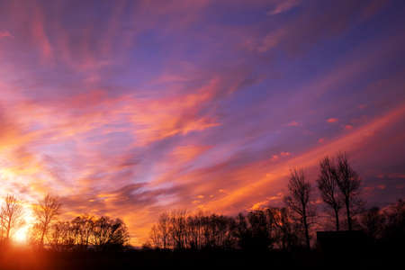 Silhouettes of autumn trees on the background of brightly colored evening sunset clouds.