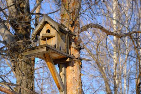 Birdhouse on a tree, tree house