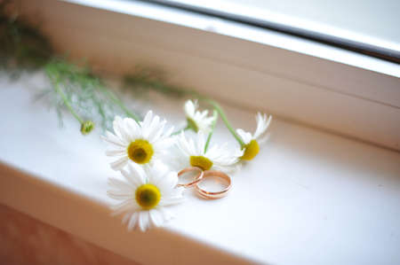 no: Wedding rings and chamomile lie on the windowsill Stock Photo