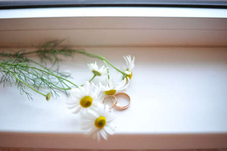 'no people': Wedding rings and chamomile lie on the windowsill Stock Photo