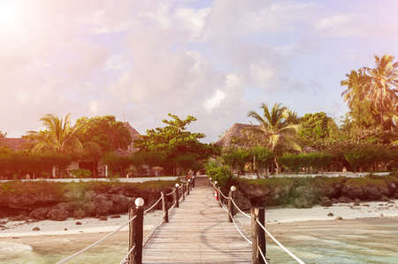 wooden bridge over the beach that leads to the palm trees