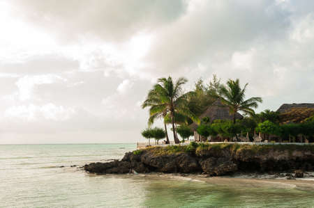 The shore line with palm trees and stone grottoes
