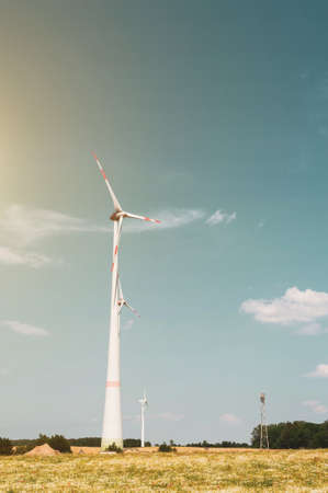 Windmills against the blue sky. Poppy and chamomile fields of Europe. The concept of eco-friendly electricity.