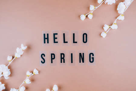 Brown background with delicate colors and the inscription HELLO SPRING Place for text, top view. Flat lay