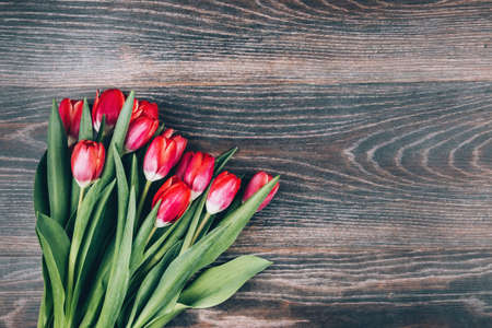 Dark wooden background with red tulips. Beautiful design for a womens holiday. Bouquet of flowers for mom. Space for text Reklamní fotografie