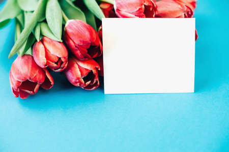 Beautiful pink tulips and a white postcard on a blue background. Space for text Banque d'images - 140627697