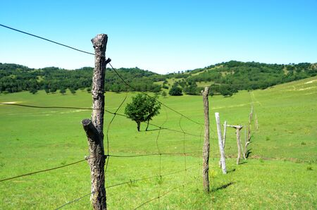 Grassland fence Stock Photo