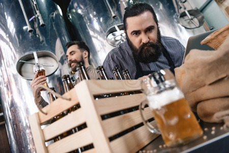 Concentrated man is watching at beer mug while another man looks at density of beer. Process of beer manufacturing. Brewing. Brewery. Beer crafting.