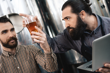 Two adult bearded brewers are testing beer. Quality control of beer malt. Expertise of beer quality. Quality control. Beer crafting. Imagens
