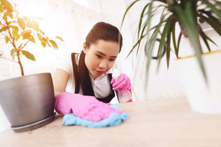 Adult Asian maid wipes dust on shelves in room.
