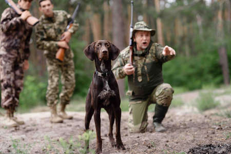 Hunting for Wildfowl Man and Brown Pointer Dog.