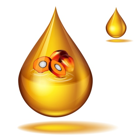 dripping of palm oil Stock Vector - 19835423