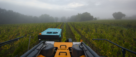 machinerie: Vendanges mécanique du raisin dans le vignoble