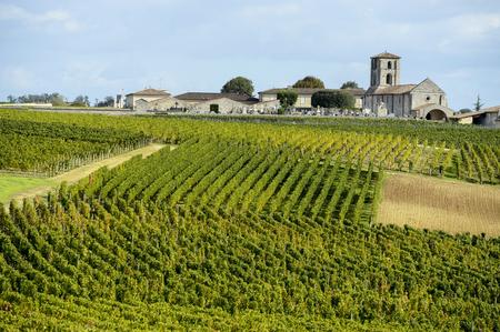 サンテミリオン、ボルドーのブドウ畑のブドウ園