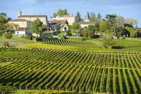 renowned: Vineyards of Saint Emilion, Bordeaux Vineyards
