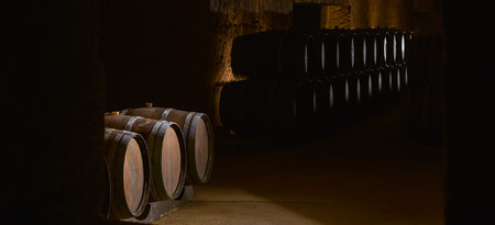 Barrels in Wine Cellar-Bordeaux Wineyard Stock Photo - 47539178