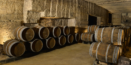 wineyard: Barrels in Wine Cellar-Bordeaux Wineyard