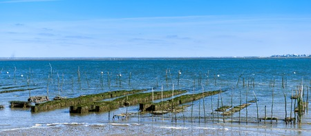 Growing oysters at low tide at the port of Arcachon, France Archivio Fotografico