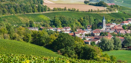 quoted: Champagne vineyards in the Cote des Bar area of the Aube department near Rizaucourt-Buchey, Champagne-Ardennes, France, Europe Stock Photo