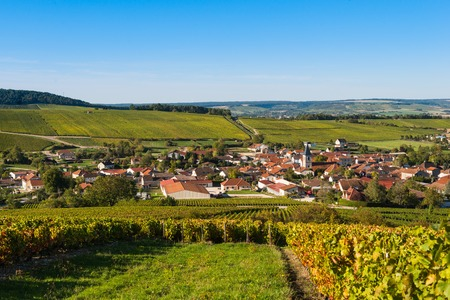 quoted: Champagne vineyards in the Cote des Bar area of the Aube department near to Baroville, Champagne-Ardennes, France, Europe Stock Photo