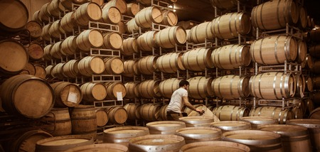 Winemaker barrels moving up or down by rolling on the ground in a large storage cellar, Bordeaux Vineyard, France Archivio Fotografico