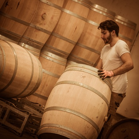 winemaker: Winemaker barrels moving up or down by rolling on the ground in a large storage cellar, Bordeaux Vineyard, France Stock Photo