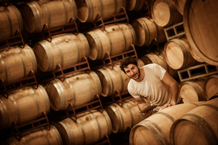 winemaker: Winemaker counting the barrels with a tablet in a large storage cellar, Bordeaux Vineyard, France