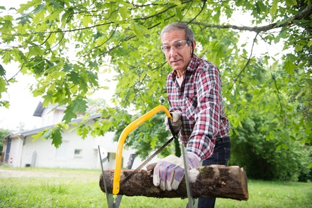 sawing: Senior man sawing a log handsaw closeup