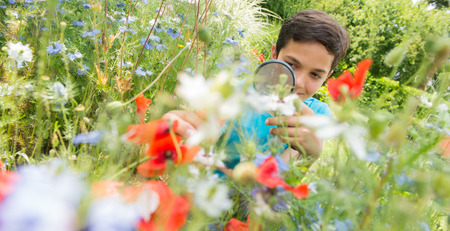 crouched: Boy looking at flower through magnifying glass