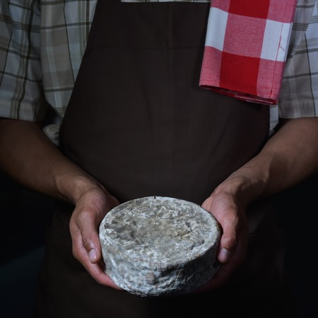 rich flavor: French tomme cheese in the hands of a cheesemaker, Studio shoot Stock Photo