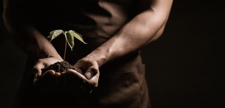 Da a explotaciones agrícolas una pequeña planta, el estudio de disparar verde