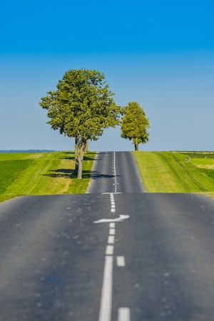 seson: Asphalt road lined with fields and trees in Champagne France Europe