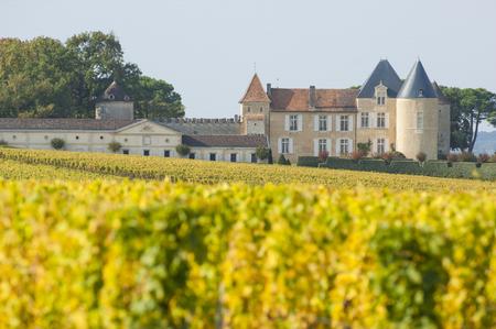 Vineyard and Chateau dYquem, Sauternes Region, France