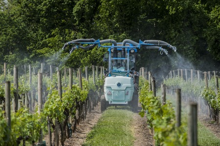 Agricultural chemical treatments in spring vineyard, France